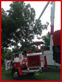 Southern Tree Care Clarksville Tennessee
